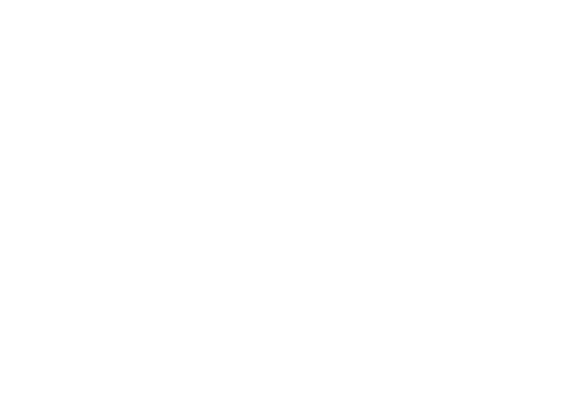 Black Friday Sale 6 days only